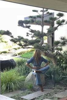Grün, grün, grün soweit das Auge reicht. Jennifer Aniston liebt ihren perfekt gepflegten Garten mit abwechslungsreicher Vegetation.  Das Foto entstand während eines Shootings für die New York Times.
