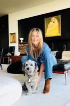 In Jennifer Anistons geschmackvollem Wohnzimmer ist immer Platz für einen flauschigen Vierbeiner. Die Schauspielerin und bekennende Hundeliebhaberin setzt beim Interior Design auf elegante Kontraste.
