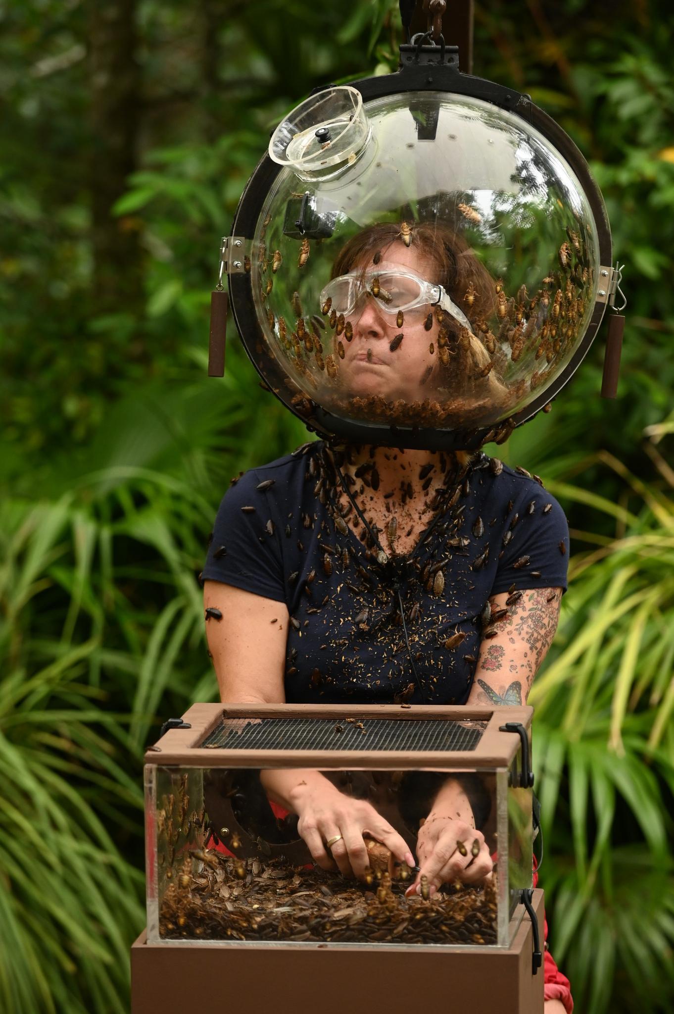 Die Dschungelcamp-Prüfung fordert Daniela Büchner ganz schön heraus.