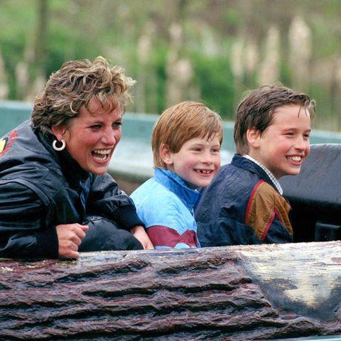 Prinzessin Diana, Prinz Harry, Prinz William