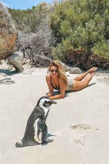 """Am Boulders Beach, nicht weit von Kapstadt, trifft Ex-""""Bachelorette"""" Nadine Klein begeistert auf einen Pinguin. Das Tier zeigt sich von der neuen Bekanntschaft jedoch eher unbeeindruckt."""