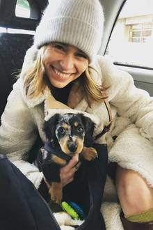 Emilia Clarke sitzt mit Hundewelpe Ted im Taxi