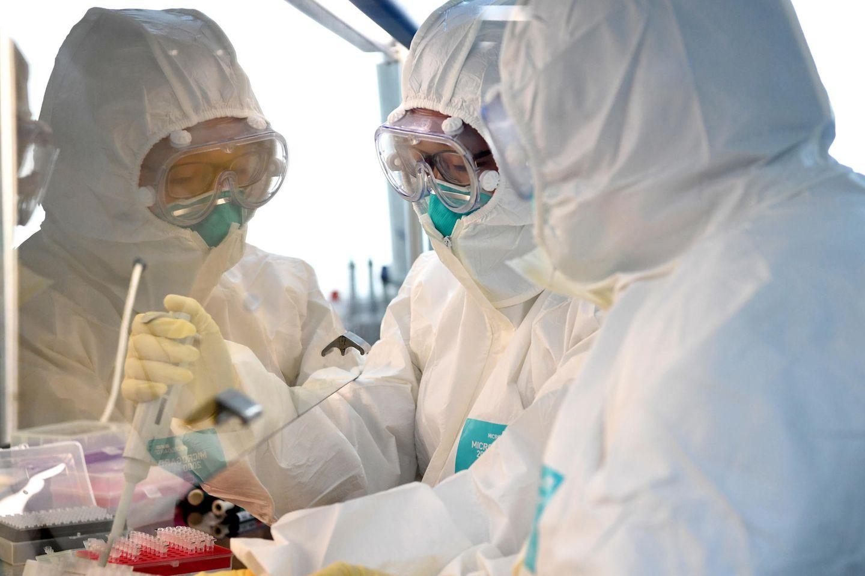 Forscher arbeiten mit Hochdruck an der Bekämpfung des Coronavirus