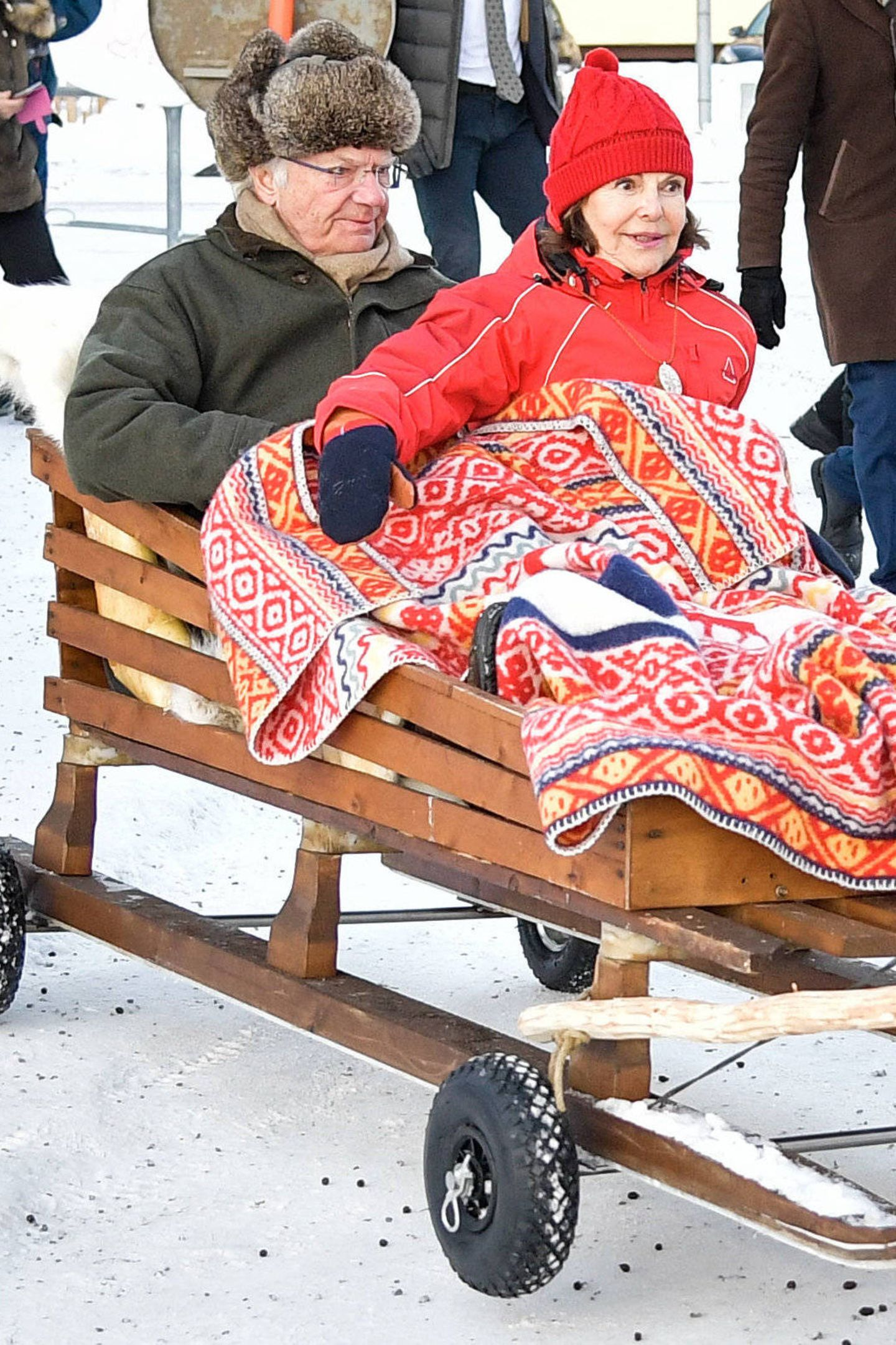 König Carl Gustaf + Königin Silvia sitzen im Rentierschlitten