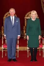 Prinz Charles + Herzogin Camilla stehen beim Empfang wie Wachsfiguren