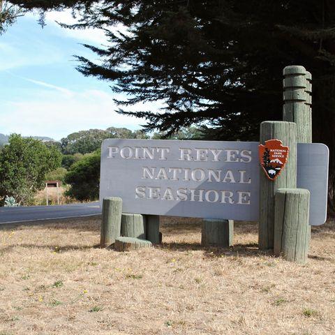 """Das Paar verschwand während der Wanderung nahe des """"Point Reyes National Seashore"""". (Symbolbild)"""