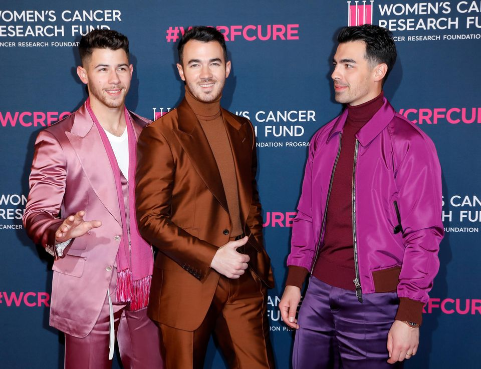 Die Jonas Brothers