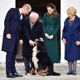 Beim obligatorischen Gruppenfoto darf Brod nicht fehlen. Klar, das alle Blicke auf den Vierbeiner gerichtet sind. Die Cambridges haben Zuhause ebenfalls einen Familienhund: Lupo, ein Cockerspaniel.