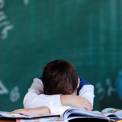 Lehrer müssen Wissen vermitteln, allerdings ist ein Gefühl für die Bedürfnisse der Schülerinnen und Schüler auch besonders wichtig.