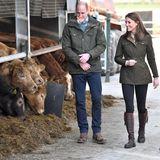 Der Herzog und die Herzogin von Cambridge besuchen die Teagasc Research Farm in der Grafschaft Meath.Die Farm gilt als Vorbild für nachhaltigeLandwirtschaft.Den Kindern von Kate und Williamhätte dieser Termin sicher auch gefallen. George, Charlotte und Louis waren in den Winterferien auf dem Land und haben sich um Lämmer gekümmert, verriet William vor Kurzem.