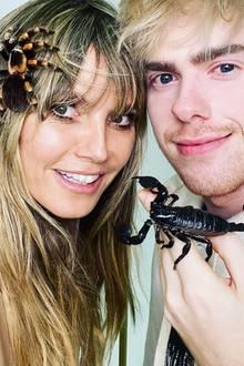 """Nichts für Spinnenphobiker! Heidi Klum hat den """"Insekten-Influencer"""" Adrian Kozakiewicz zu Gast, und der hat seine kleinen FreundeTarantula und Skorpion mitgebracht. Ganz bezaubernd!"""