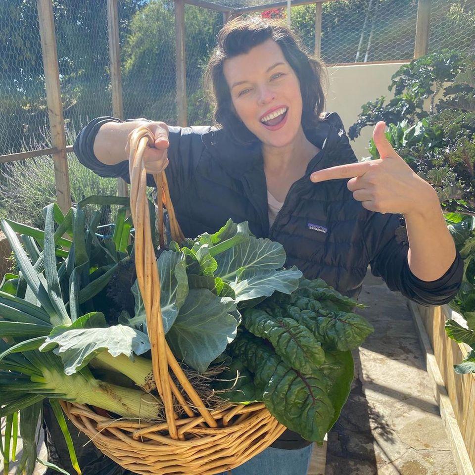 Milla Jovovich schreibt auf Instagram, dass es sich für sie so anfühlt, als ob sie schon 60 oder 70 Tage in selbstgewählter Quarantäne ist, obwohl es nur sechs oder sieben Tage sind. Sie macht einen Familienausflug in ihren Garten, alle ernten frisches Gemüse und die Kinder können sich austoben.