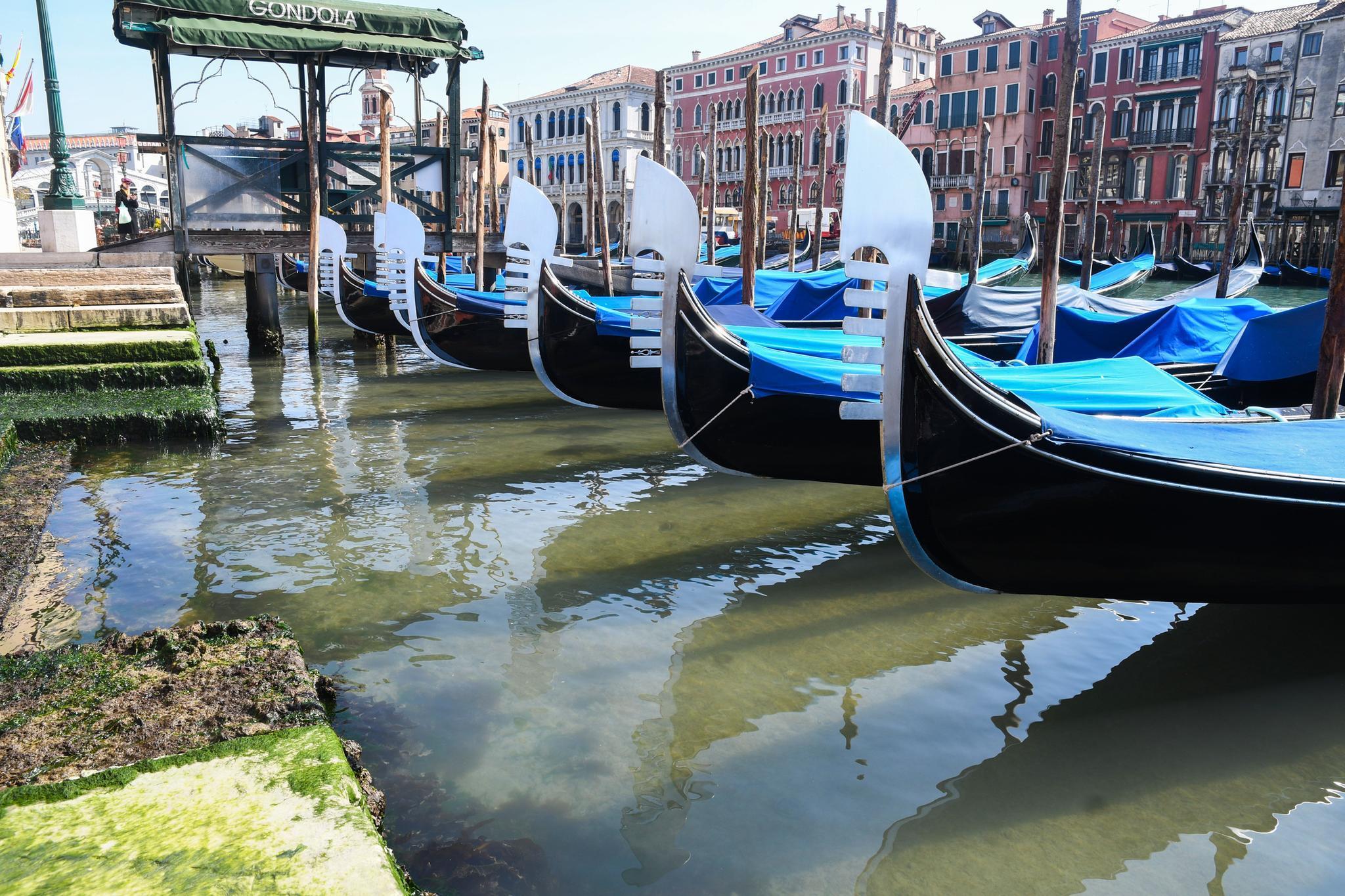 Venedig Klares Wasser