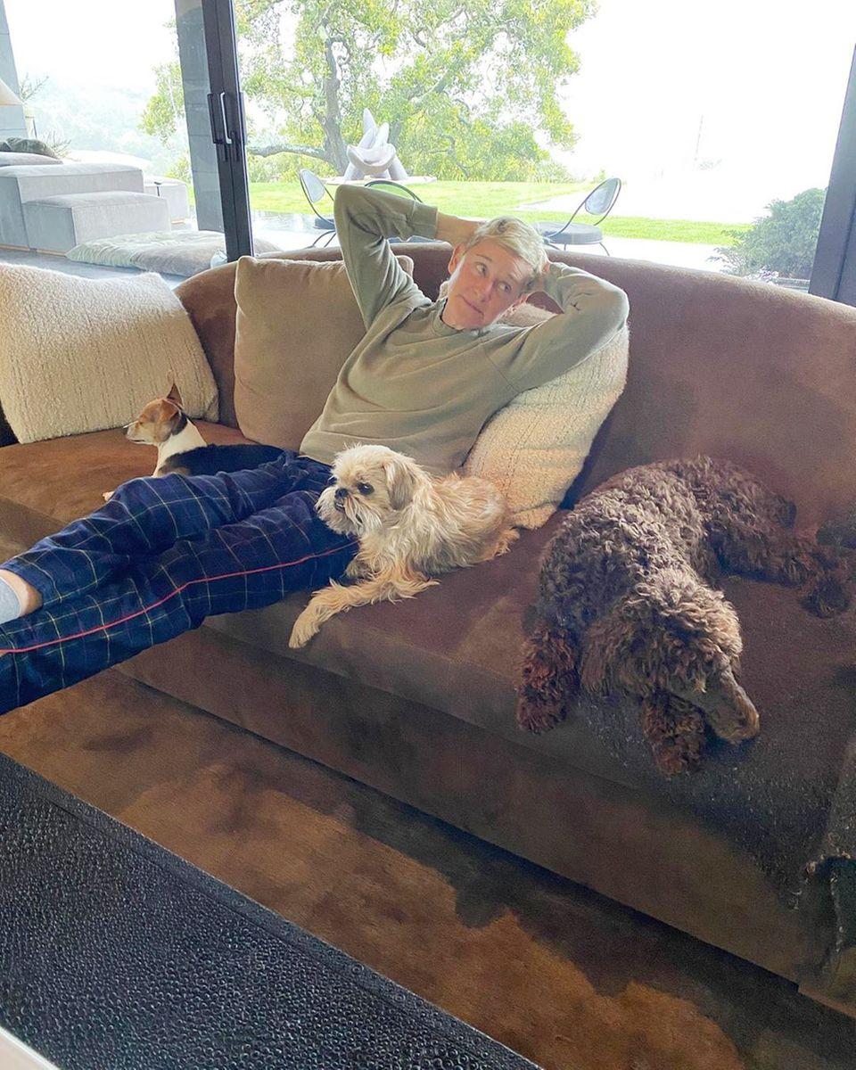 Der quirligen Talkshow-Moderatorin Ellen DeGeneres ist zu Hause langweilig. Mit ihren Hunden chillt sie auf dem Sofa und schwört, dass ihre Frau Portia di Rossi 1,80 Meter Abstand hält.