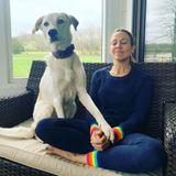 Auch Sängerin Sheryl Crow bekommt seelischen Beistand von Hund Jewels. Ommm!