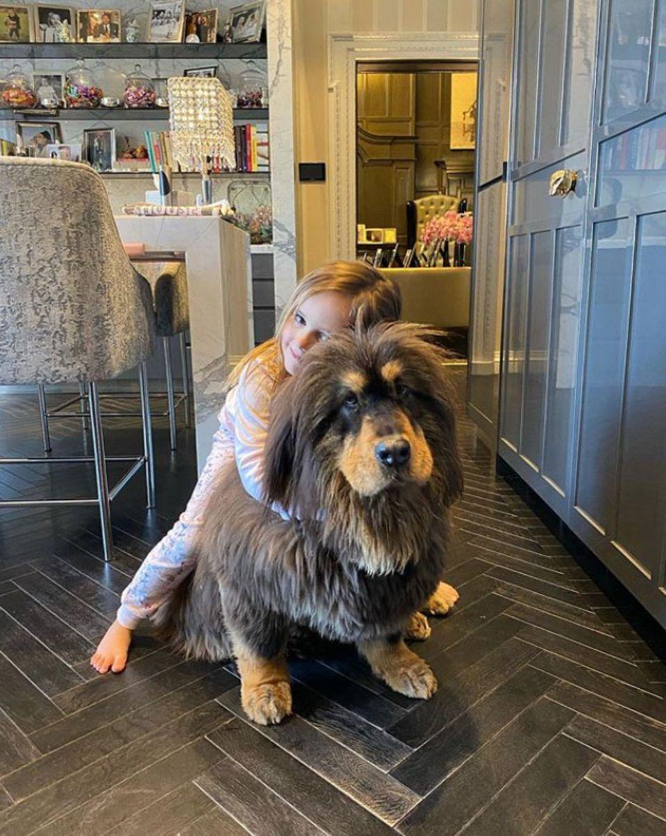 Tamara Ecclestones Tochter Sophia und Familienhund Belle halten fest zusammen.