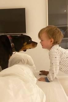 """Vogue Williams postet dieses süße Foto aus der Corona-Quarantäne. Ihre """"beiden Jungs"""", wie sie auf Instagram nennt, kommen gut über die Zeit. Winston und Theodore (rechts) verstehen sich prächtig."""