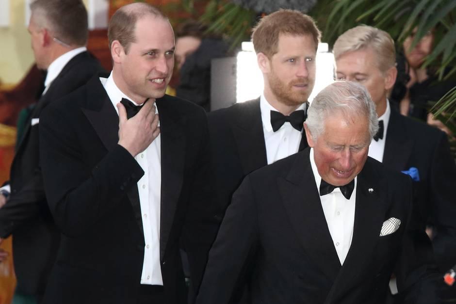 Prinz William, Prinz Harry, Prinz Charles
