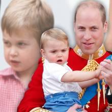 Prinz William und Prinz Louis