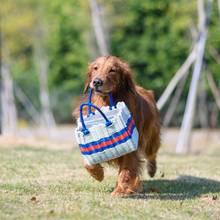 Clevere Idee: Um das Ansteckungsrisiko während der Coronakrise zu verringern, können Hunde die Einkäufe zu Risikopatienten transportieren. (Symbolbild)