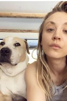 """Kayley Cuoco teilt dieses Foto aus ihrer Corona-Quarantäne mit ihren Instagram-Followern. """"Das ist Normans Gesicht nachdem ich ihm erzählte, dass wir eine Weile im Haus bleiben werden... oh, und das ist kein Schal, den er trägt, das ist sein Hals. Er fragt sich wahrscheinlich auch, wann ich mir das letzte Mal die Haare gewaschen habe""""."""
