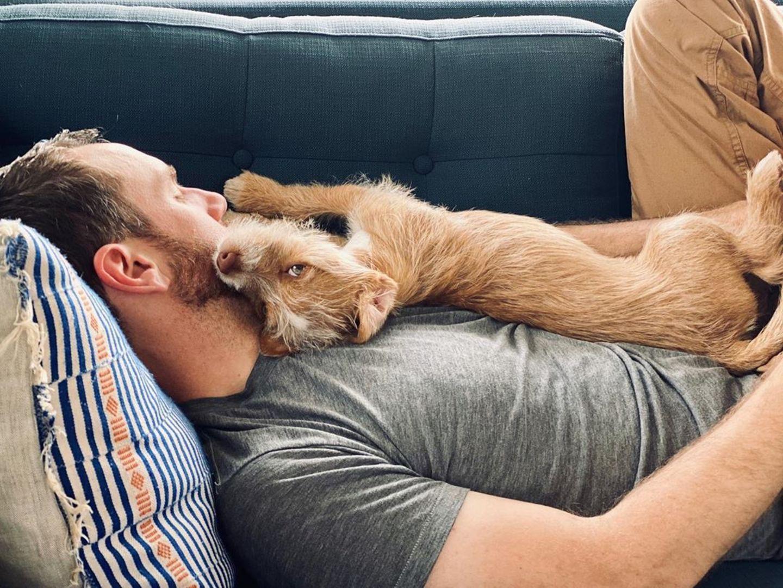 Zwei müde Kerle auf dem Sofa - Lily Collins Freund Charlie McDowell und ihr Hund Redford sind sich einig. Etwas Schöneres als eine Pause auf dem Sofa und zusammen kuscheln gibt es einfach nicht.
