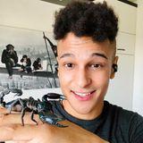 """Prince Damien ist ein großer Fan von exotischen Tieren. Nun ist eins dazugekommen und auf Instagram stellt er es seinen Fans vor: """"Ich hab ein neues Familienmitglied: LADY, die Skorpiondame. Ich befürchte nun, dass meine Chancen, einen Partner zu finden, gegen Null gefallen sind"""". Solange die Dame keinen spitzen Kommentar abgibt, steht dem ja nichts im Wege."""