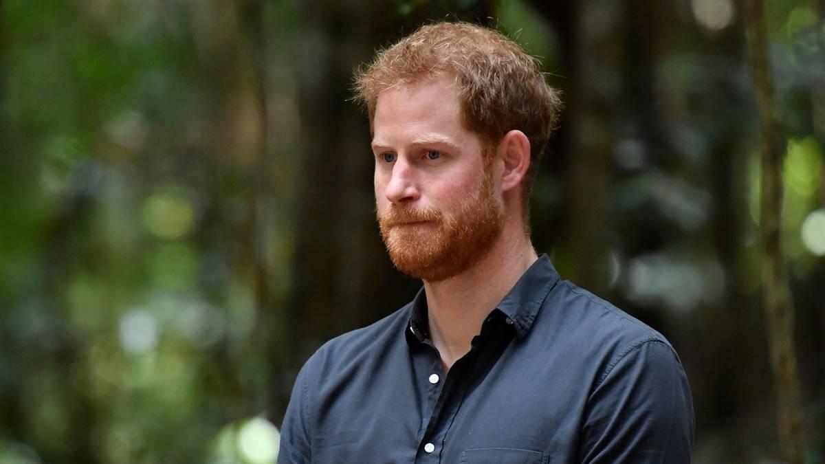 """Prinz Harry: """"Er ist nur noch ein Schatten seiner selbst!"""""""