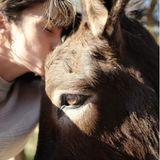 Zärtlich gibt Nikki Reed der Eselsdame Freya eine Kuss. Freya ist eines von 1600 Tieren, das von der Stiftung ihres Ehemanns Ian Somerhalder aus Notsituationen oder schlimmen Verhältnissen gerettet wurde. Dabei geht es um Hunde, Vögel, Katzen, Schildkröten, Pferde, Ziegen, Schafe, Kaninchen, Kühe, Esel, aber auch andere Tiere wie einen Seehund, einen Löwen, einen Seelöwen und sogar Fledermäuse.