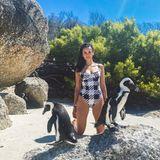 """Mit diesem lustigen Throwback-Foto erinnert """"Vampire Diaries""""-Star Nina Dobrev an ihreZeit in Südafrika. Mit ihrem schwarz-weißen Badeanzug passt sie hervorragend zu den beiden Brillenpinguinen am Boulders Beach in Simon's Town bei Kapstadt. Und wie sie auf Instagram zugibt, war auch genau das ihre Absicht."""