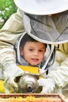 Ein bisschen Hilfe braucht Prinz Oscar aber noch von Mama Victoria. Dann klappt das auch mit dem Beruhigen der Bienen.