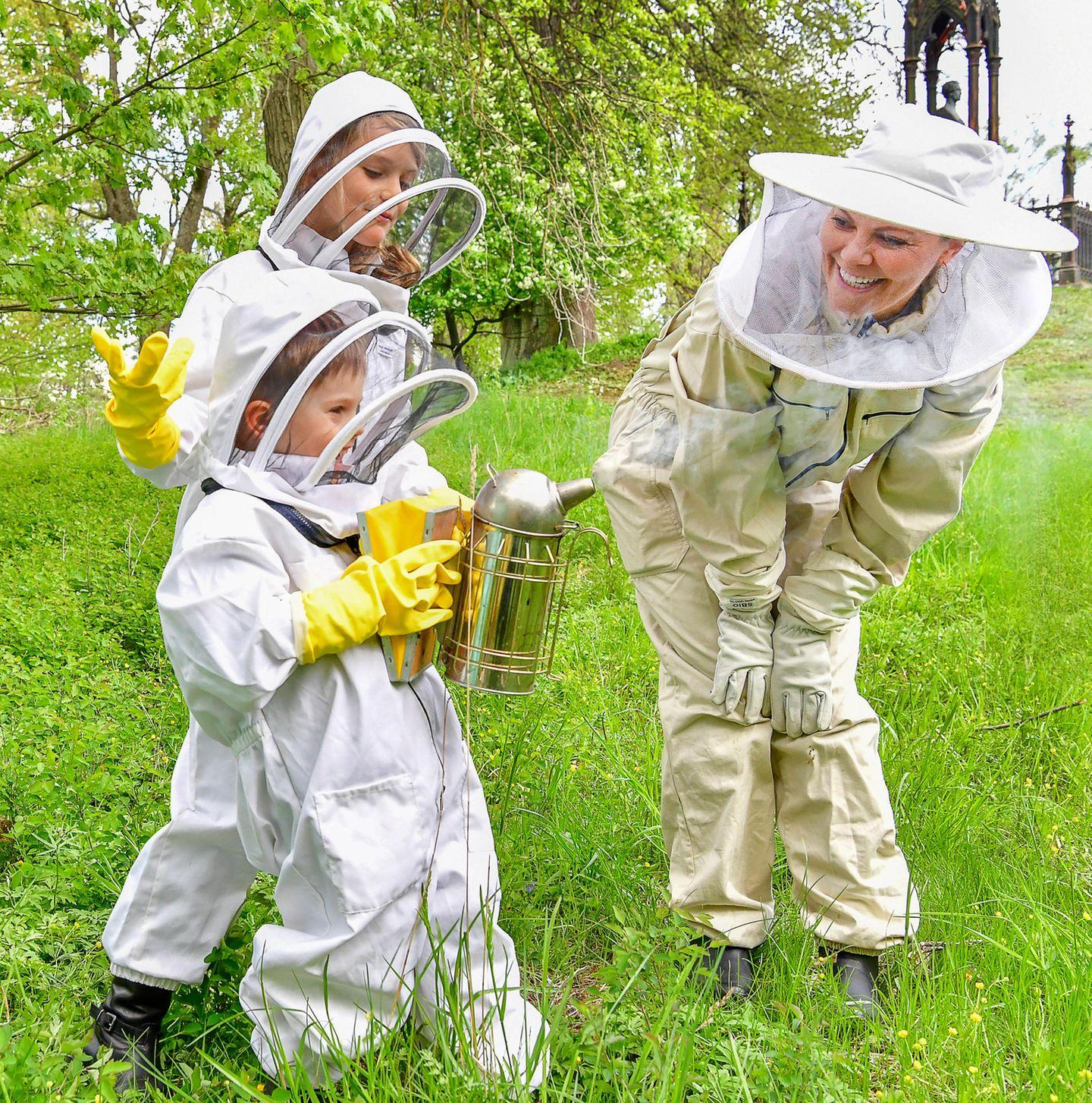 Mit dem Smoker werden die Bienen ruhig gestellt, damit der Imker in Ruhe arbeiten kann. Wie das Gerät funktioniert, probiert prinz Oscar hier mit großem Spaß.