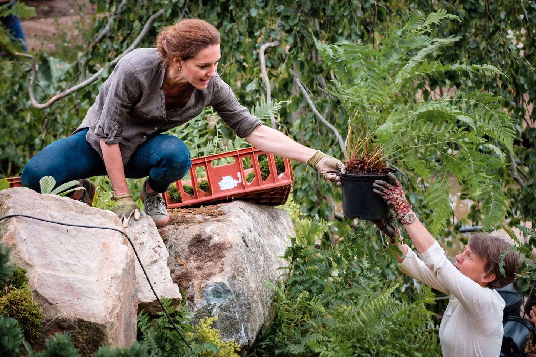"""20. Mai 2020  Beim Aufbau ihres """"Back to Nature""""-Gartens während der Chelsea Flower Show im letzten Jahr hat Herzogin Catherine natürlich selbst kräftig mit angepackt. Anlässlich der diesjährigen virtuellen Show der Royal Horticultural Society, die jetzt online zu sehen ist, wurde dieses schöne Bild von Kate auf dem Twitter-Account der Kensington-Royals veröffentlicht."""