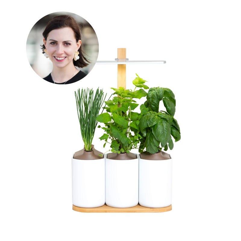 Küchenkräuter für Anfänger: Redakteurin Kathrin möchte ihren Indoor-Kräutergarten auf keinen Fall mehr missen.