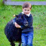 Zuckersüß: Prinz Oscar scheint besonders Gefallen an dem schwarzen Schaf gefunden zu haben.