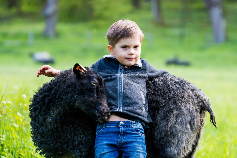 Ziemlich lässig und voller Vertrauen lehnt sich Oscar an seinen tierischen Freund, der sich überdie Zuneigung des kleinen Prinzen zu freuen scheint.