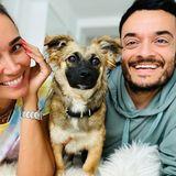 """Über Irrungen und Wirrungen kommt Cici schließlich nach Deutschland ins Tierheim Dellbrück. """"Irgendwann kamen die Zarrellas vorbei und ich dachte mir: Hey - die sind laut, herzlich und lustig - genau wie ich! Also habe ich mir die ausgesucht. Ich habe jetzt meine eigene Familie - das ist sooo cool! Endlich!"""" heißt es weiter auf Instagram. Cici wird sicher gut auf Jana Ina, Giovanni und die beiden Kinder aufpassen."""