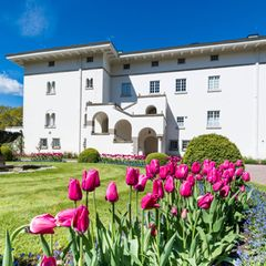Das königliche Sommerschloss, Sollidens Slott, steht umgeben von einer weitläufigen Parkanlage an der Westküste der Ostseeinsel Öland und befindet sich nur wenige Kilometer südlich des kleinen Städtchens Borgholm. Mit seiner leuchtend weißen Fassade hebt es sich deutlich vom Grün des umgebenen Parks ab.
