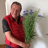 """Für einefrühlingshafteAtmosphäre im eigenen Zuhause sorgt Gerhard Schröder übrigenshöchstpersönlich – und macht seiner Ehefrau damit eine große Freude. """"Blumen kaufen für Ehefrau tut jeder, aber Feldblumen selbst pflücken macht nicht jeder"""", schreibtSoyeon Schröder-Kim auf ihrem Instagram-Account."""
