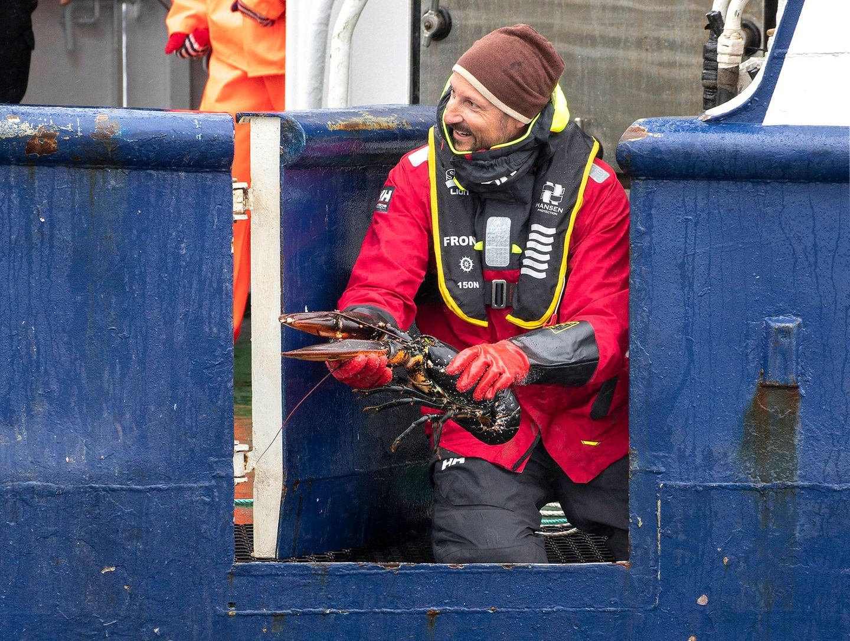 Auf dem Schiff bekommt Prinz Haakon einen Einblick in die Arbeit des norwegischen Meeresforschungsteams und fängt bei der Mini-Expedition selbst einen Hummer aus dem Wasser. Nach kurzer Begutachtung wird das ansehnliche Exemplarwieder freigelassen.