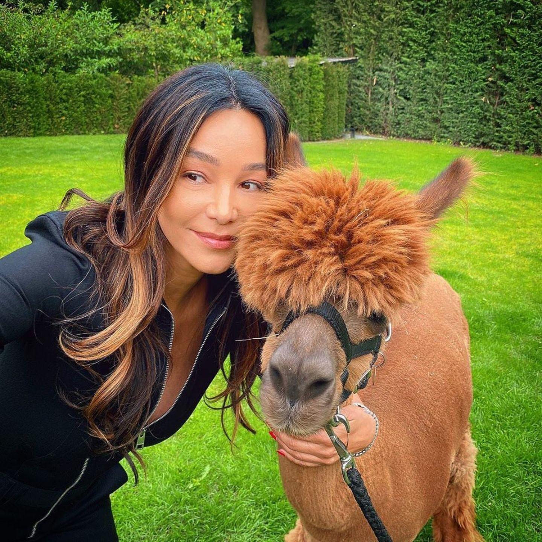 """Verona Pooth freut sich über den Kontakt zu diesem niedlichen Mini-Alpaka. Es ist der Überraschungsgast auf der Geburtstagsparty von Sohn Rocco und sie schreibt dazu auf Instagram: """"Die kleinen Alpakas waren, glaube ich, die schönste Überraschung, die ich für Roccolito machen konnte"""". Das Tier mit der außergewöhnlichen Frisur passt farblich auf jeden Fall zu Veronas Strähnchen."""