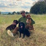 Familientag mit den Mädels: David Beckham genießt seine Zeit beim Spaziergang samt Päuschen mit den Hundedamen Olive, Fig und Sage. Ehefrau Victoria spielt hier dabeinur die Rolle der Fotografin.