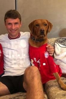 """13. Juni 2020  Angefeuert wird im FC Bayern-Dress. Kurzerhand bekommen auch die Hunde Micky und Murmel ein Trikot verpasst. In der Pause postet Müller auf Instagram: """"Viel Glück für die zweite Halbzeit, Amigos""""."""