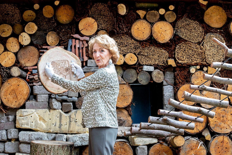 """17. Juni 2020  Prinzessin Margriet der Niederlande eröffnet einen mit gesunden Nahrungsmitteln gespickten """"Ernährungswald"""" für kleine Primaten. Im Affenzoo Apenheul bei Apeldoorn können sich diesefrei zwischen den Besuchern bewegen. Die mehr als 100 Meter lange Insektenwand unterstützt das Nahrungsangebot der Zwergaffen."""