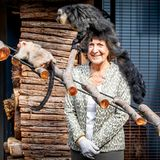 Auch, wenn es hier so aussieht - Prinzessin Margriet ließ sich von diesen lustigen Gesellen nicht auf dem Kopf herumtanzen. In Appledoorn eröffnet die jüngere Schwester der früheren Königin Beatrix eine 100 Meter lange Insektenmauer für die Affen im Zoo Apenheul. Die putzigen Primatenkönnen sich dort frei bewegen und Margriet schloss den einen oder anderen Zwergaffen ganz besonders ins Herz.
