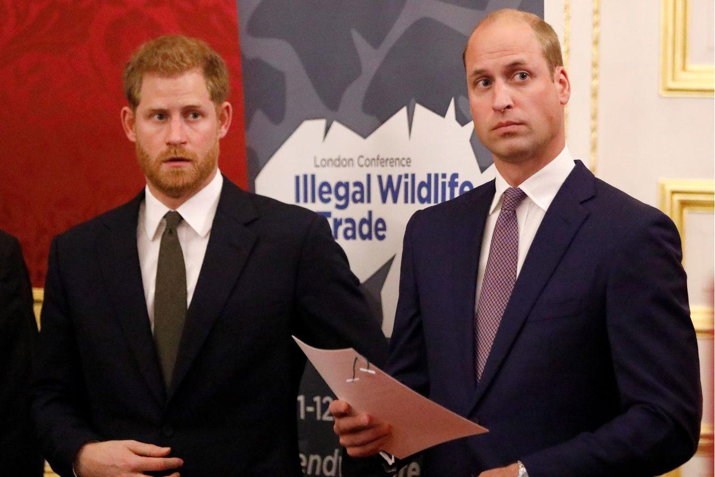Prinz Harry + Prinz William