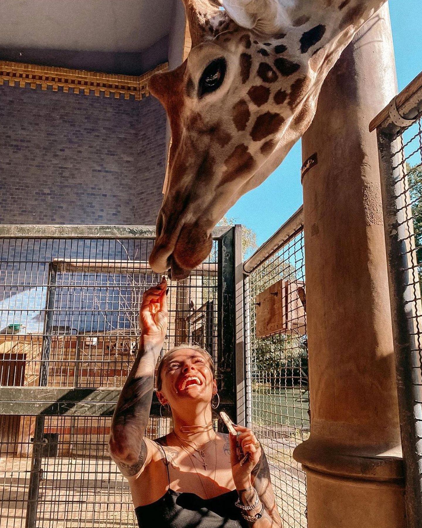 Na, wie ist die Luft da oben?! Im Berliner Zoo hat Sophia Thomalla endlich mal jemanden gefunden, der genauso lange Beine hat wie sie selbst.