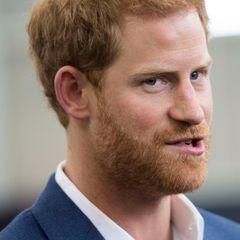"""Prinz Harry liest seiner Traumfrau Meghan Markle angeblich jeden Wunsch von den Augen ab. Hinter den Palastmauern soll ihm seine treue Ergebenheit den pikanten Spitznamen """"Blow Jobs Harry"""" eingebracht haben. Die Leute seien überzeugt, """"dass sein Gehirn durch unglaublich guten Sex verwirrt war"""", schreibt Royal-Insiderin Lady Colin Campbell in ihrem Buch """"Meghan and Harry: Die Real Story."""""""