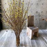 Maria Sharapova investiert jedes Jahr in Kunst - so wie in diesen französischen Holzstuhl aus den 1960er-Jahren, der sicherlich nur zum Anschauen benutzt wird.