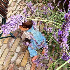 14. Juli 2020  Avi macht sich so langsam auf seinen eigenen Weg, und Mama Wolke Hegenbarth teilt diese ersten Krabbelversuche ihres kleinen Abenteurers mit ihren Fans. Als ob dieser Schnappschuss nicht schon niedlich genug wäre, hat sich im Bild sogar noch eine Hummel versteckt.